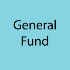 Donate to the PSO General Fund