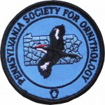 PSO Patch